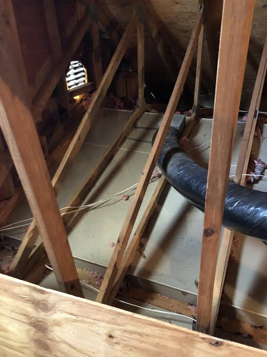 capitol exterminating attic restoration 3